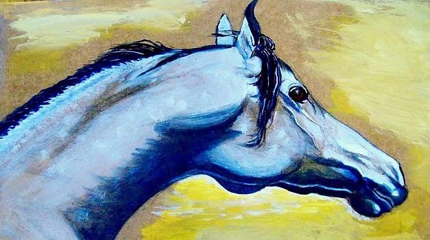 Desert Horse by Kendrew Lascelles