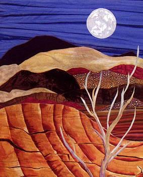 Desert Moonrise by Maureen Wartski