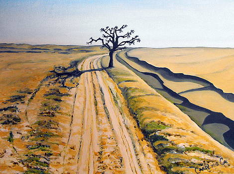 Desert Neem by Caroline Cunningham