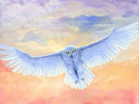 Divine Owl by Kent Nicklin