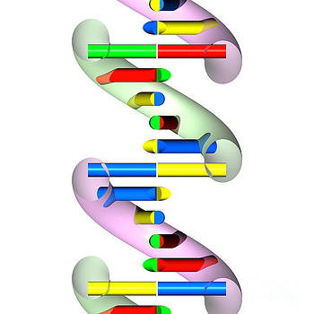 DNA abstract section 7 by Russell Kightley
