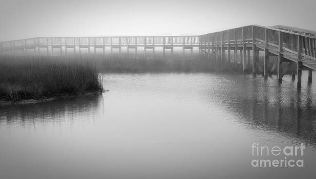 Dock on the Bay by John Cooper