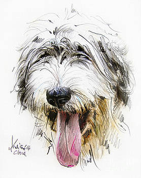 Dog portrait - drawing by Daliana Pacuraru