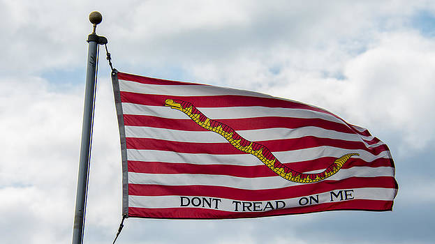 Don't Tread On me by Guy Whiteley