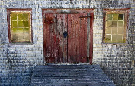Door into the Past by Allan MacDonald