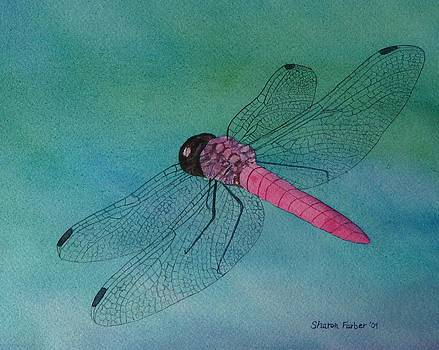 Dragonfly by Sharon Farber