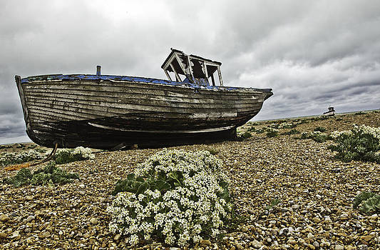 Dungeness by Lesley Rigg