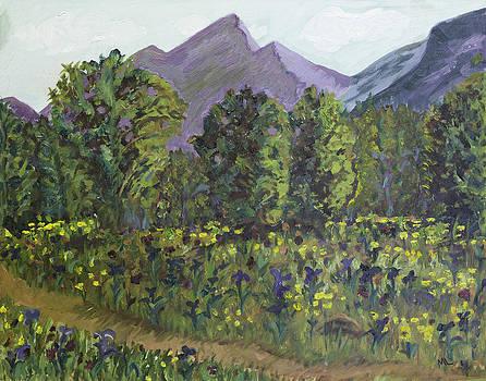 Eklutna Meadow by Mary LaFever