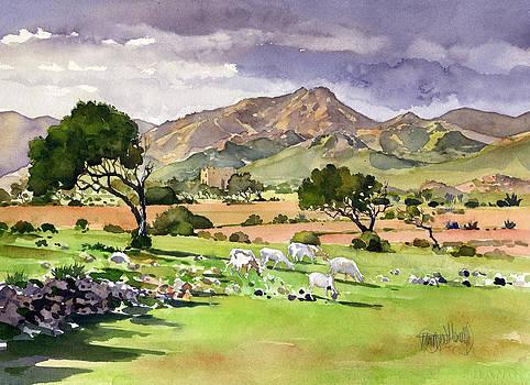 El Valle de Rodalquilar by Margaret Merry