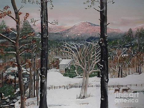 Ellijay - Pink Knob Mountain - Signed by Jan Dappen