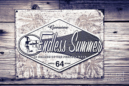 Sophie Vigneault - Endless Summer
