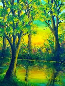 Evening River Sunset by Catherine Jeffrey