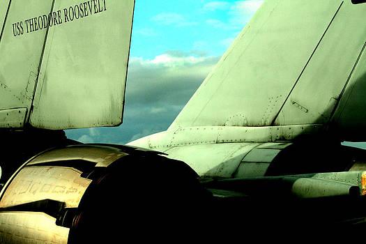 F-14 Tomcat by Maxwell Amaro
