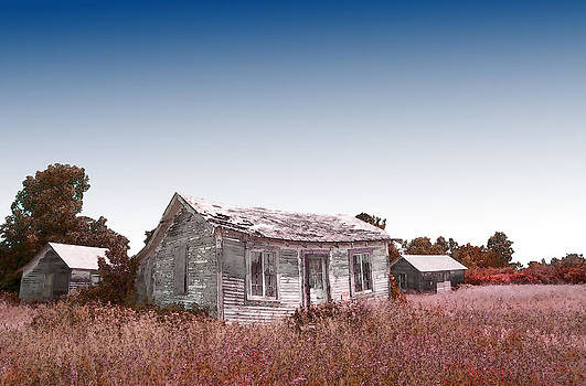 Fading Homestead by Ray Summers Photography