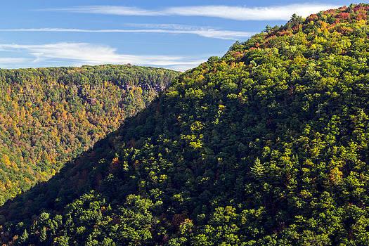 Pennsylvania Grand Canyon Fall 2014 by Frank Morales Jr