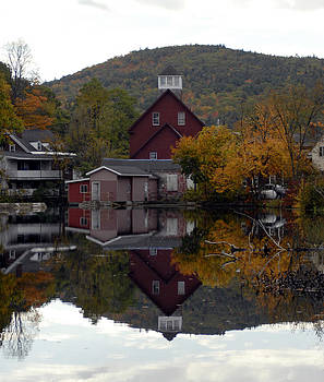 Fall Reflections by Donna Desrosiers