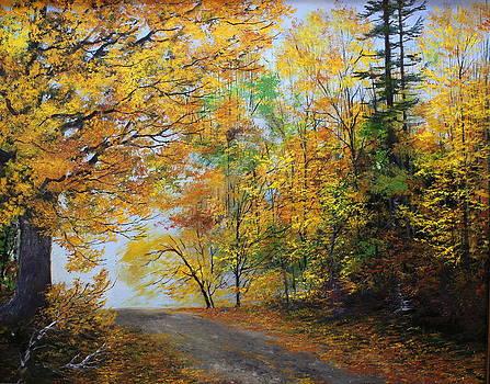Fall Road by Ken Ahlering