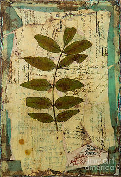 Fallen Leaf one by Sandra Dawson