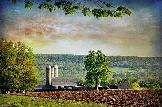 Farm On Perry Nigart by Stephanie Calhoun