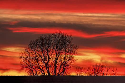 Scott Bean - Fire In The Sky