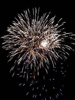 Fireworks by Mark Malitz