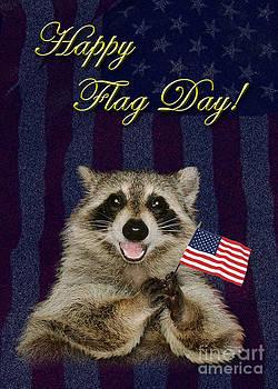 Jeanette K - Flag Day Raccoon