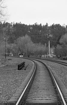 Steven Lapkin - Flagstaff tracks