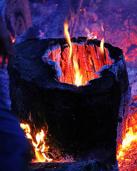 Flames by Connie Zarn