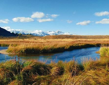 Joe Duket - Flat Creek Vista