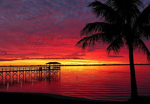 Florida Sunset III by Elaine Franklin