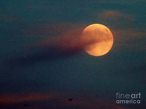 Fly With me To the Orange Moon by Saska V
