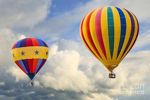 Flying High by Brenda Giasson