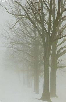 Fog by Karin Thue