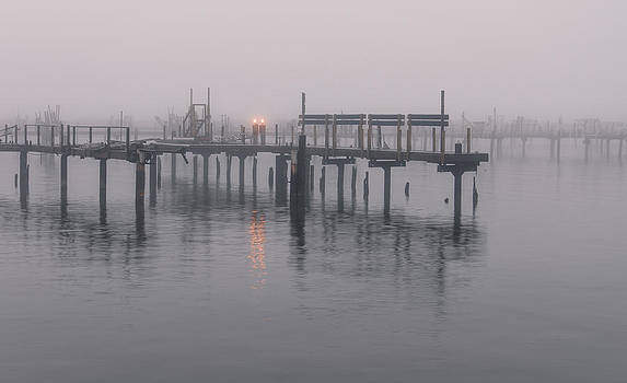 Fog on the Marina by Anthony Sell