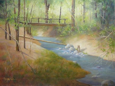 Footbridge At Frijoles Creek by Carol Reynolds