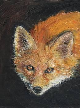 Sandra Lytch - Fox