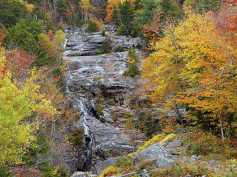 Franconia Notch State Park by Jim  Wallace