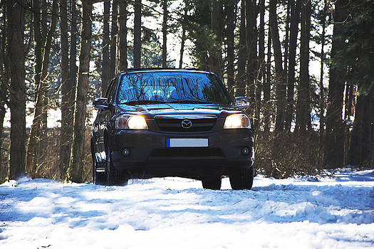 Newnow Photography By Vera Cepic - Front side of Mazda Tribute on the mountain road