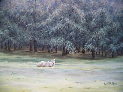 Frosty Morning by Cynthia Riley