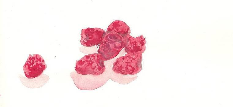 Fruits by Saskia Ahlbrecht