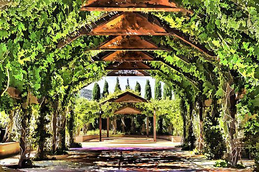 Muhie Kanawati - Garden