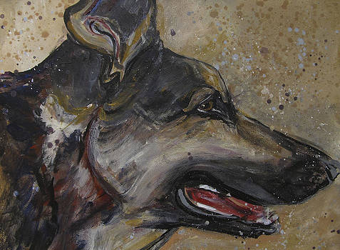 German Shepherd by Mary Gallagher-Stout