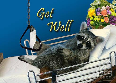 Jeanette K - Get Well Raccoon