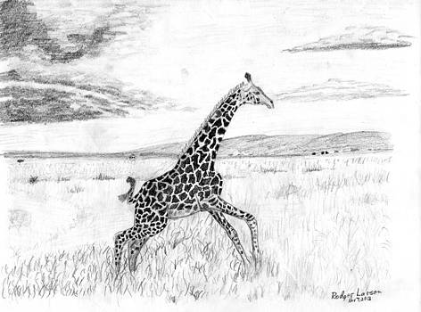 Giraffe Running by Rodger Larson