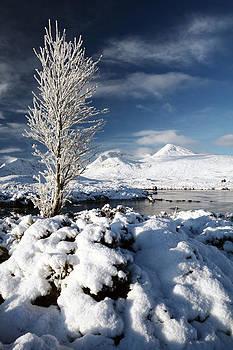 Glencoe Winter by Grant Glendinning