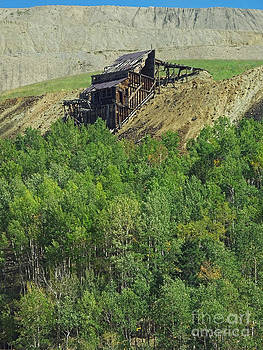 Gold Mine by David Pettit