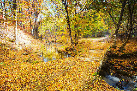 Golden River by Evgeni Dinev