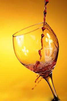Michael Ledray - Got Wine