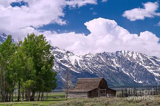 Grand Teton NP by Juergen Klust