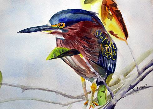 Green Heron by Randy Bell